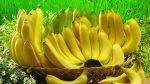 Полезные свойства банановой маски для кожи лица