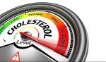 5 продуктов, которых следует избегать, если у вас высокий уровень холестерина