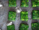 10 способов использования лотка для льда