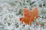 Русские народные приметы про погоду на ноябрь