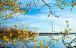 Русские народные приметы про погоду на апрель
